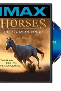 Horses: The Story of Equus  - Horses: The Story of Equus