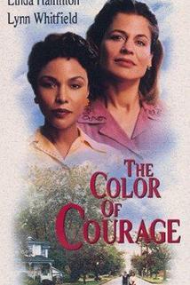 Barva odvahy