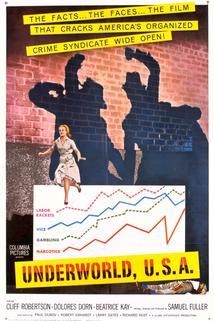 Podsvětí USA