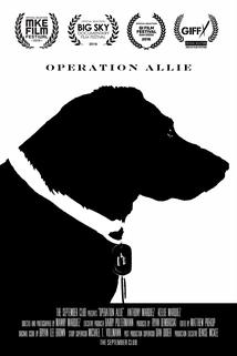 Operation Allie