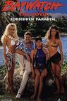 Baywatch: Forbidden Paradise