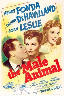 The Male Animal  - The Male Animal