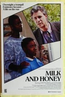 Mléko a med
