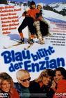 Blau blüht der Enzian (1973)