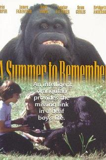 A Summer to Remember  - A Summer to Remember
