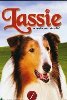 New Lassie, The - Once Upon a Time...  - Once Upon a Time...