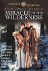 Zázrak v divočině