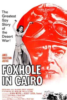 Foxhole in Cairo  - Foxhole in Cairo