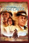 Zázrak u Sage Creek