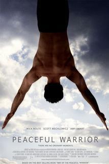 Plakát k filmu: Pokojný bojovník