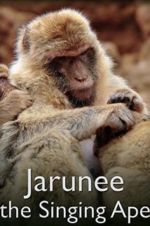 Jarunee the Singing Ape
