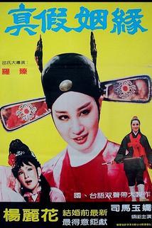 Zhen jia yin yuan