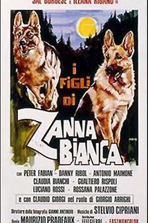 Figli di Zanna Bianca, I