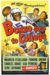 Bonzo Goes to College