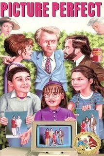 Ideální rodina