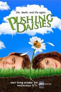Řekni, kdo tě zabil  - Pushing Daisies