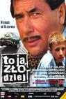 To jsem já, zloděj (2000)