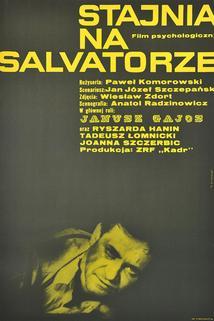 Stajnia na Salwatorze