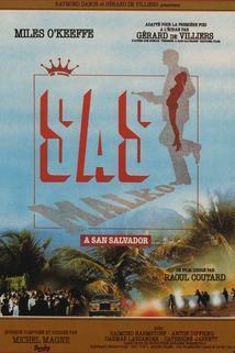 S.A.S. v San Salvadoru