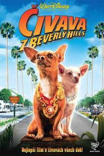 Čivava z Beverly Hills