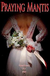 Kouzlo svatební noci