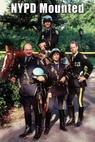 N.Y.P.D. Mounted (1991)