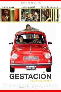 Gestación