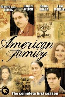 American Family  - American Family