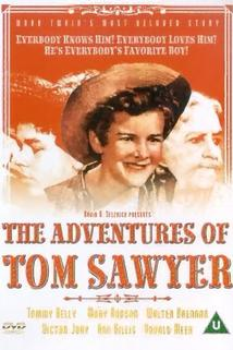 The Adventures of Tom Sawyer  - The Adventures of Tom Sawyer