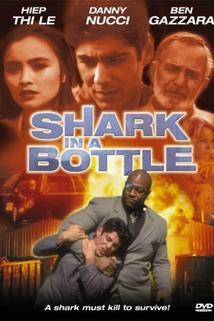 Shark in a Bottle  - Shark in a Bottle