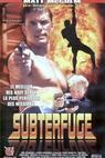 Subterfuge (1996)