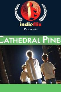 Cathedral Pines  - Cathedral Pines