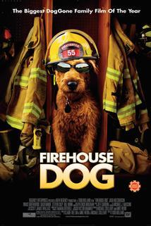 Hafan hasičem