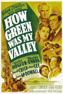 Plakát k filmu: Bylo jednou zelené údolí