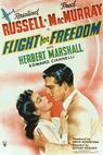 Flight for Freedom (1943)