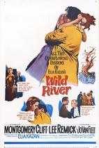 Plakát k filmu: Divoká řeka