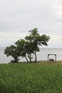 Island Life - From SoCal to Kill Devil Hills  - From SoCal to Kill Devil Hills