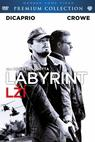 Labyrint lží (2008)