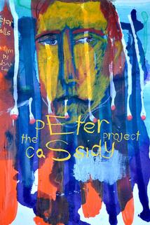 The Peter Cassidy Project