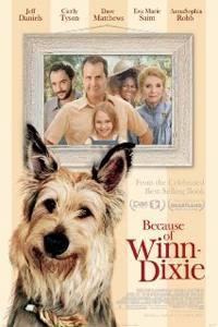 Co způsobil Winn-Dixie