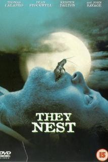 They Nest  - They Nest