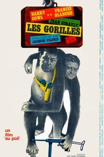 Gorilles, Les