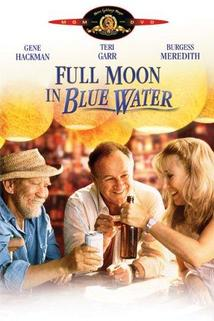 Úplněk v modré vodě  - Full Moon in Blue Water