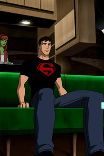Young Justice - Downtime  - Downtime
