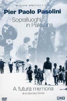 Sopralluoghi in Palestina per il vangelo secondo Matteo