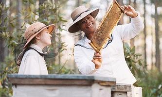 Tajný život včel