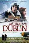 Waiting for Dublin (2007)