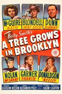 V Brooklynu roste strom