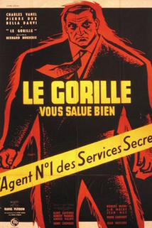 Zdraví vás Gorila