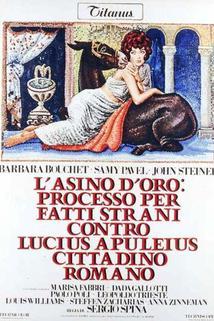 Asino d'oro: processo per fatti strani contro Lucius Apuleius cittadino romano, L'